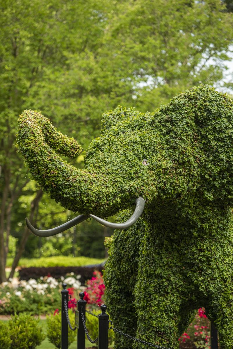 Elephant topiary in front of Rose Administration Building