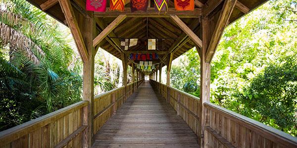 Bridge at Florida Tech